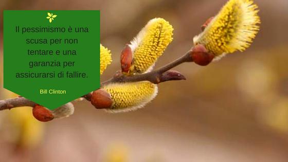 fiore-di-bach-willow